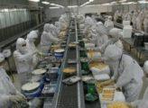 Ứng dụng và cách kiểm tra chất lượng mỡ bò thực phẩm